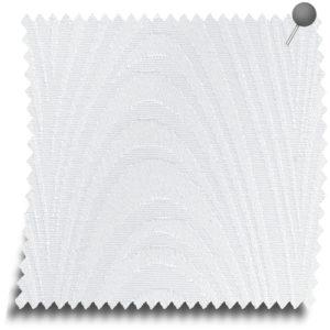 carlo-white
