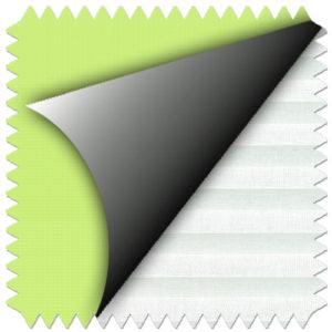 pale-green-4569-1016
